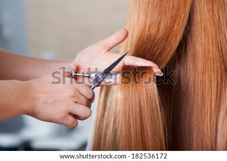 Professional hairdresser cutting long woman's hair