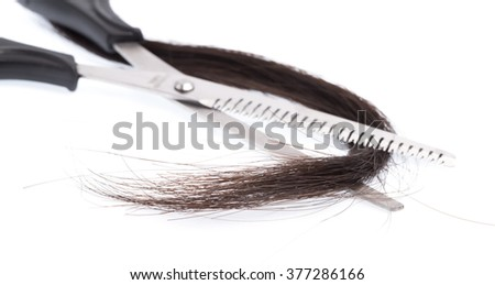 professional hairdresser scissors with hair isolated on white background
