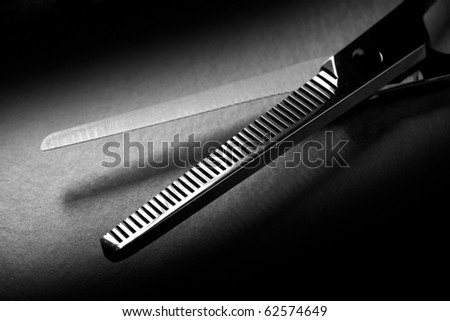 Professional Hairdressing Thinning Scissors - stock photo