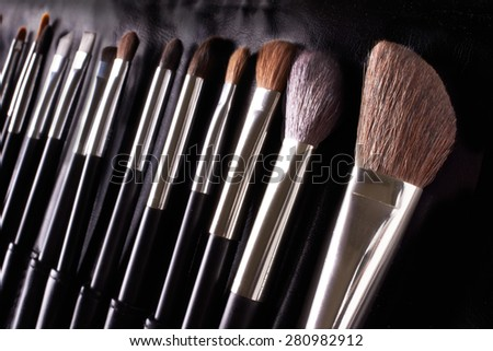 Professional makeup brushes. Make up kit applicator.