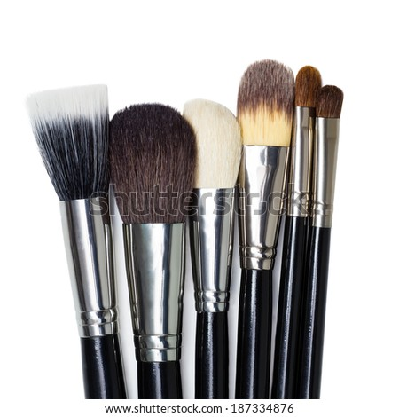 Professional makeup brushes on a white background