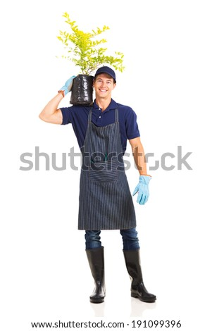 professional male gardener carrying a plant isolated on white - stock photo
