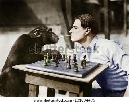 Profile of a young man and a chimpanzee smoking cigarettes and playing chess - stock photo