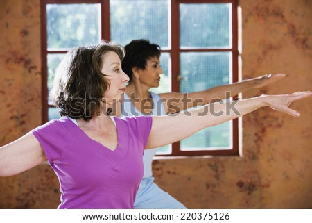 Profile of senior women exercising - stock photo