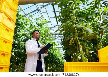 Profile view of satisfied agronomist wearing white coat analyzing quality of tomato plants and taking necessary notes, plastic crates with harvest on foreground