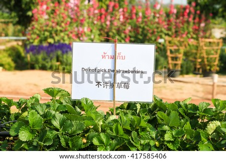 Prohibition Signs - stock photo