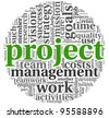 Project and management concept in word tag cloud on white background - stock photo