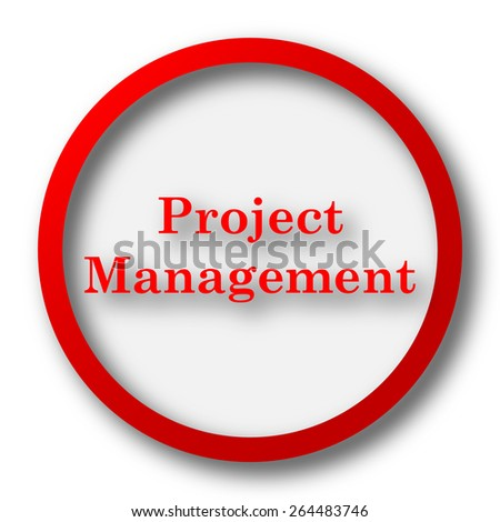 Project management icon. Internet button on white  background.