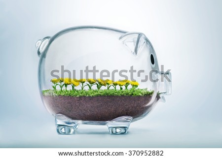 Prosperity concept with grass and flowers growing inside transparent piggy bank - stock photo