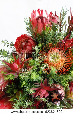 Protea Flowers in an arrangement with space for text