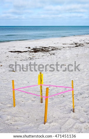 Protected Sea Turtle Nest on the beach of Anna Maria, Florida