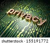 Protection concept: circuit board with word Privacy, 3d render - stock photo