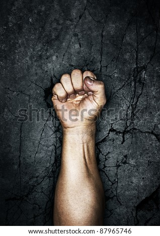 Protest fist - stock photo