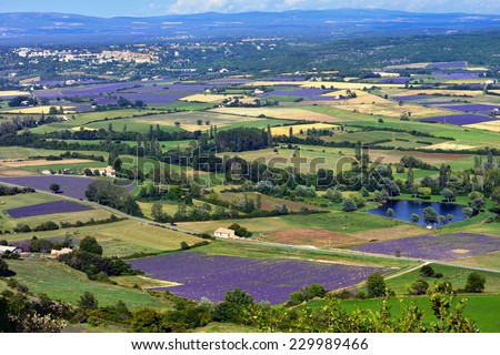 Provence rural landscape. View from above on lavender field and farmhouses near village of Sault - stock photo