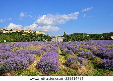 PROVENCE, SAULT - JULY 17, 2014: Annual photo festival in Sault, France. Exhibition in lavender field