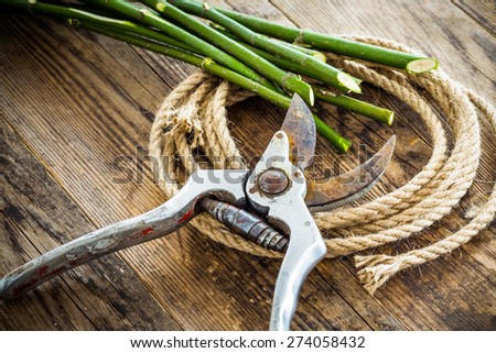 Pruning shears and rope on wood background tree branches. - stock photo