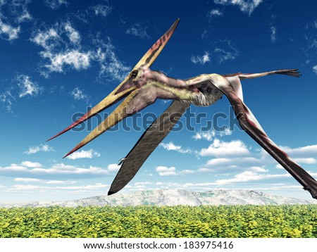 Pterosaur Pteranodon Computer generated 3D illustration - stock photo