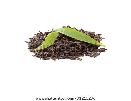 Pu-erh tea and fresh tea leaves - stock photo