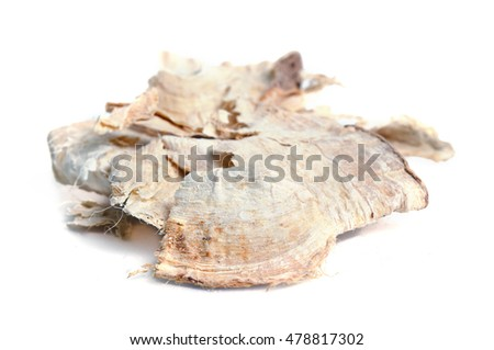 Pueraria mirifica, White Kwao Krua, Pueraria candollei Graham ex Benth. var mirifica isolated on white