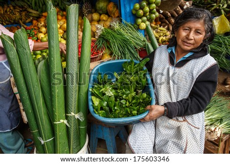 PUERTO MALDONADO - PERU CIRCA 2013: Unidentified woman sells exotic fruits in market of the city, Circa 2013 in Peru . Amazon Peru is known for the rich variety of exotic vegetables unknown beyond. - stock photo