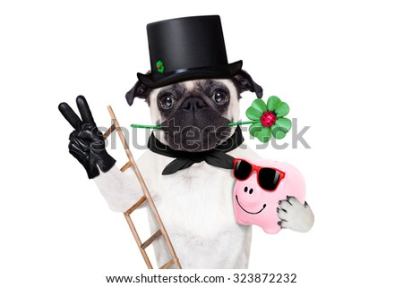pug dog as chimney sweeper with four leaf clover  celebrating and toasting for new years eve isolated on white background - stock photo