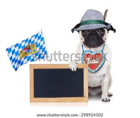 pug dog dressed up as bavarian with gingerbread as collar, isolated on white background, holding a blank empty blackboard or banner  with a bavaria flag