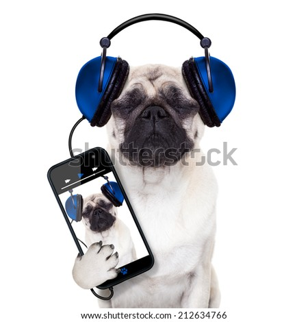 pug dog listening to music from smartphone or player, eyes closed - stock photo