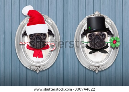 pug dogs as santa claus with sugar candy cane, and chimney sweeper for new years eve inside a frame on the wall on christmas holidays - stock photo