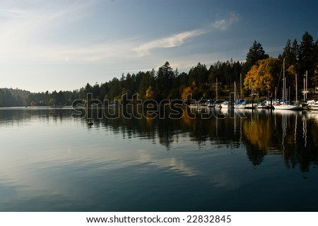 Puget Sound marina in the fall - stock photo