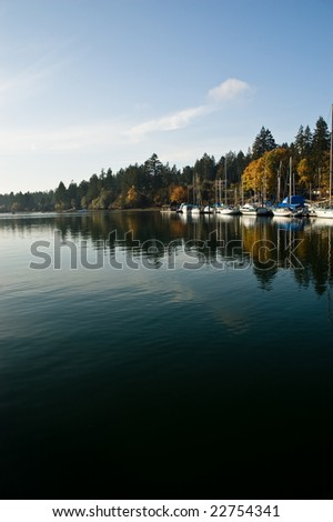 Puget Sound marina in the fall with calm water and blue skies.