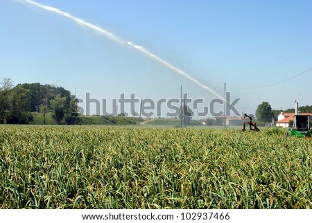 pump jet watering a cultivated field in farmlands