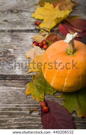 Pumpkin and fall leaves on an old wooden table