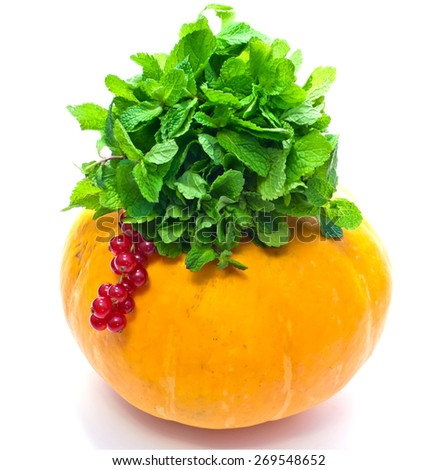 pumpkin and green leaves and currant on white background - stock photo