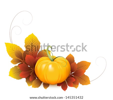 Pumpkin and yellow autumn leaves isolated on white background, raster illustration - stock photo
