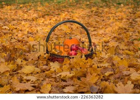 Pumpkin, apple, basket and leaves. autumn mood - stock photo