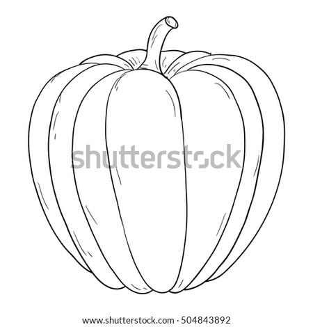pumpkin hand drawing sketch contour outline illustration raster version