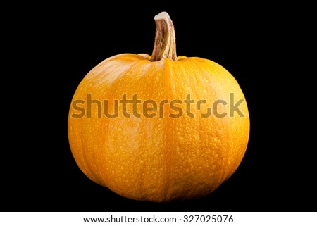 Pumpkin isolated on black background - stock photo