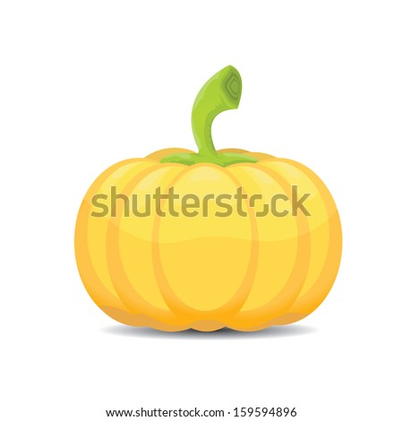 Pumpkin isolated on white background. raster version. - stock photo