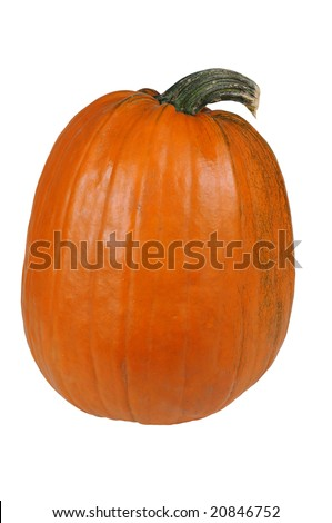 Pumpkin isolated over a white background
