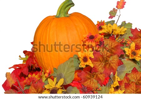 Pumpkin nestled in Fall leaves - stock photo