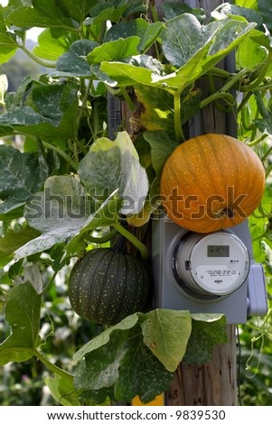 Pumpkin on Electric Meter - stock photo