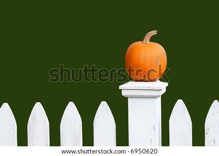 Pumpkin on White Fence - stock photo