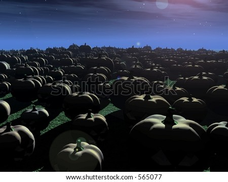 Pumpkin Patch a huge field of pumpkins at night - stock photo