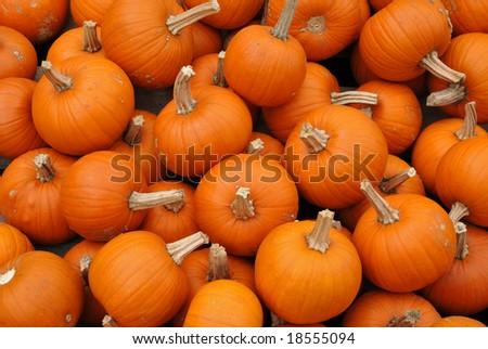 Pumpkin Pile - stock photo