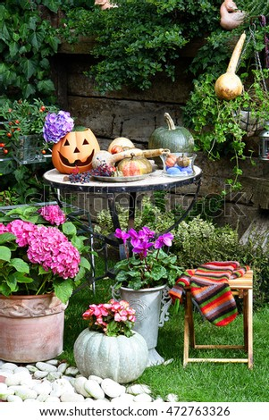 pumpkin pot halloween garden decor and galvanized bucket