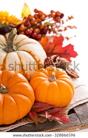 Pumpkin still life  with nuts and spices isolated on white