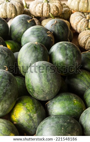 Pumpkin, watermelon, and cantaloupe which is placed for sale. - stock photo