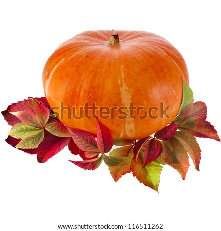 Pumpkin with colorful autumn leaves isolated on white background - stock photo