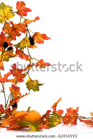 Pumpkin with fall leaves isolated on white, Autumn scene - stock photo