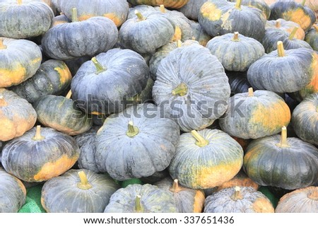 Pumpkins. - stock photo